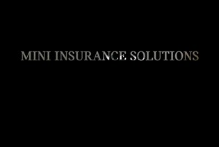 MINI Reasons to Insure