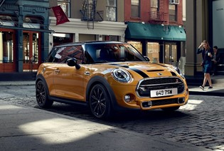 MINI Business Partnership Programme.